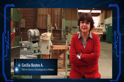 Investigadores de la UBB trabajan con nanotecnología para mejorar el uso sustentable de la madera en Chile.